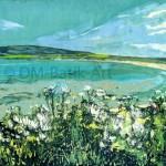 Sands of Evie, Orkney